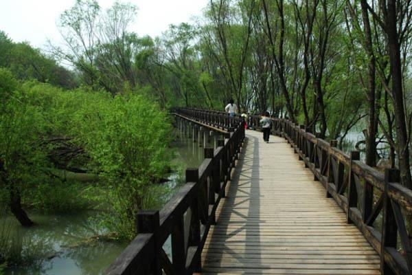 铁山寺国家森林公园内的森林分布属暖温带--亚热带图片