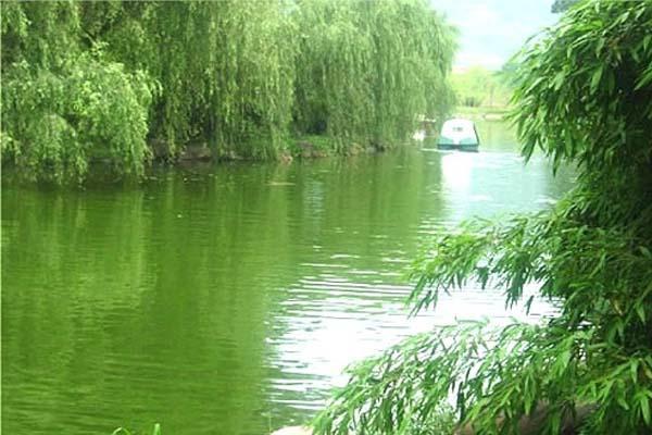 浙江安吉四季风景