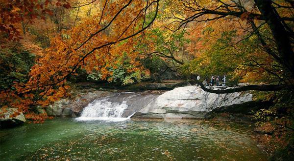 米仓山国家森林公园