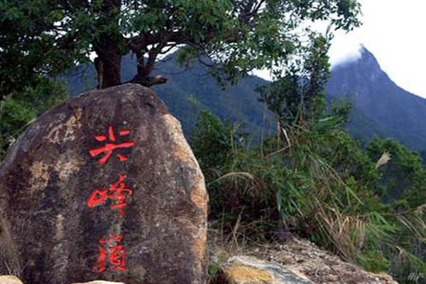 尖峰岭国家森林公园位于海南岛西南部,1992年由林业部批准成立.