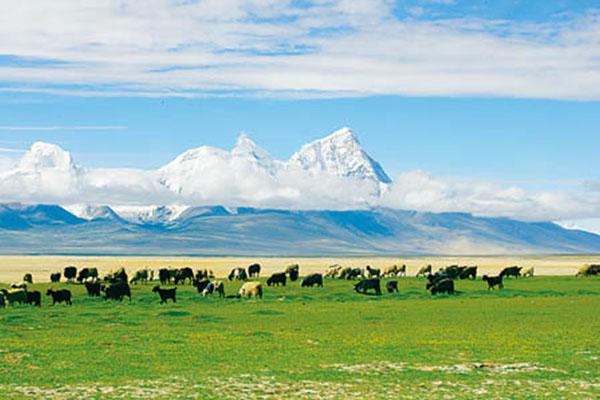 珠穆朗玛峰保护区